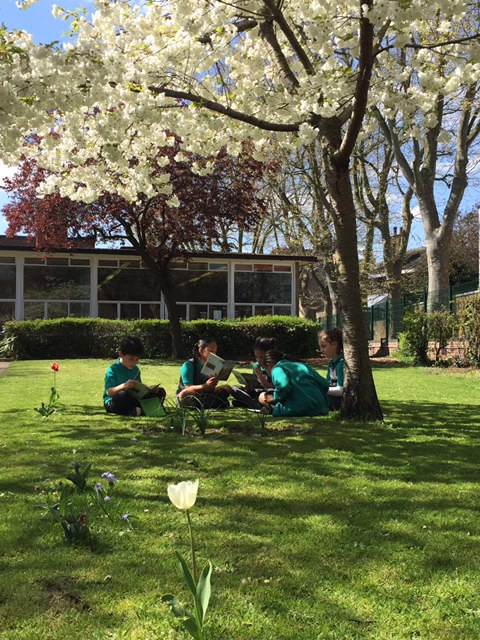 Children spotted enjoying the gorgeous spring weather at Sulivan today. Aren't they lucky?